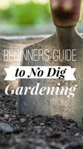 No Dig Vegetable Gardening for Beginners