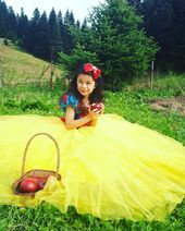Snow White Costume, Snow White Birthday Dress, Party Gown, Yellow Skirted Dress
