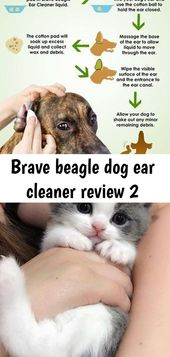 Brave Beagle Dog Ear Cleaner Bewertung 2