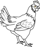 Illustration Of A Chicken Animal Coloring Pages Easy Animal