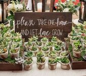 Let love grow with these gorgeous succulent wedding favours! #succulents #weddin…