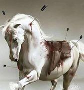 راقت لي هجم السرور علي حتـى أنه من فرط ما قد سرني أبكاني يا عين قد صار الدمع منك سجية تبكين من فرح ومن أحزان Horses Animals
