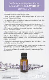 Ätherische Öle Für Tiere   – Essential oils