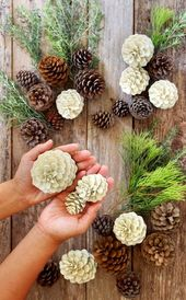 Easiest 5 Minute 'Bleached Pinecones' {without Bleach!}