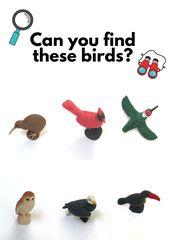 Bird Watching Activity for Preschool