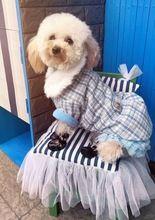 Tienda Online Envio Gratis Ropa Para Mascotas Chicdog Perro Gato