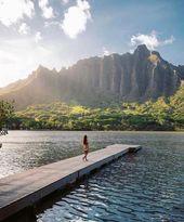 Aloha! Episches Bild von @emmett_sparling. Schauen Sie sich sein Profil für mehr schöne …   – beach