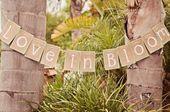 Garden Party Bridal Shower Wedding Planning 64+ Trendy Ideas