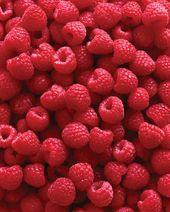 Rising Raspberries for the Complete Household – Backyard – GRIT Journal