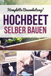 Build a raised bed of wood yourself: Simple construction manual