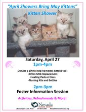 Our Annual Kitten Shower Is Tomorrow April 27 We Hope To See You There Kitten Season Kitten Humane Society