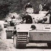 • Est. 04/08/17 sur Instagram: Uncommon picture, a column of Tigers driving towards…
