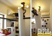 Haustierfreundliche Designs