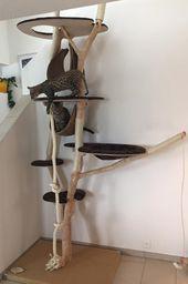 KatzentRäume – Katzenbaum – Der besondere Naturkratzbaum aus Echtholz – Selbstgebauter kratzbaum