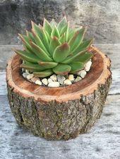 37 DIY rustikale Holz Pflanzer Box Ideen für Ihren erstaunlichen Garten – Pflanzen – DIY
