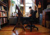 Illustrator Workspace Orange Studio: Illustrators in their Studios (Part 1)