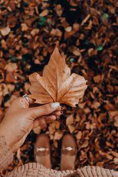 Der Herbst ist ein zweiter Frühling, in dem jedes Blatt eine Blume ist. #Autumnvibes #il