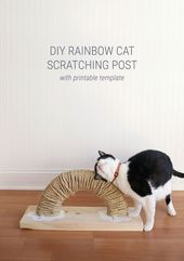 Wie erstelle ich ein Rainbow DIY Cat Scratch Pad   – Projects to MAKE