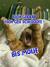Ischgla schen geh schlooofe! Bis Moije …   – Gute Nacht Sprüche