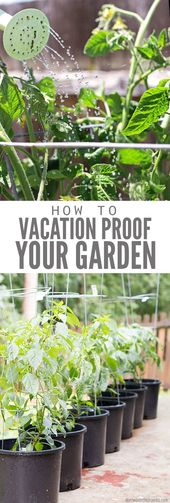Vacation Proof Your Garden with These Easy DIY Methods