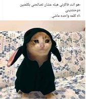 Pin By Hod Hod On Funny Arabic Funny Funny Comments Funny Pictures