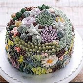 These succulent cakes are almost too pretty to eat – Mmhhhhhhh, lecker