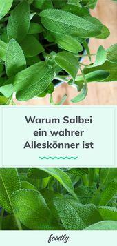 5 Hacks und Rezepte mit Salbei
