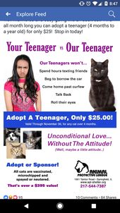 Made Me Chuckle Http Ift Tt 2aqmrrp Animal Rescue Fundraising Animal Shelter Donations Cat Adoption