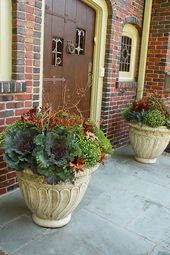 Lastly discovered a design that matches my entrance steps, pots and purple brick for fall! El…