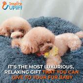 Lit confortable en fausse fourrure pour animaux de compagnie 😍