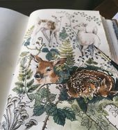 An Imagination That Looks Great On Paper: The Creative Mind Of Lily Seika Jones