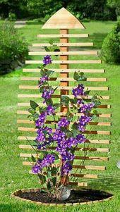20 der schönsten Gitterpflanzen, die Sie anbauen sollten Quelle der Güte … ….