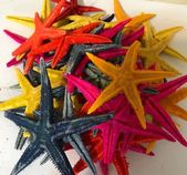 "Multi-Colored Dyed Starfish Crafter's ""Seconds"" Collection (35pcs) – Imperfect Mini Starfish -Craft  – Products"