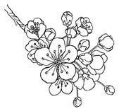 Handzeichnung Apfelbaum Zweig in der Kunst der Blume Linie zu isolieren …   – idée tatouage