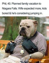 Funny Dog Bios Funny Dog Memes Funny Animals Funny Dogs