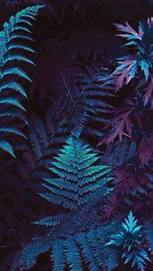 wallpapers | Tumblr