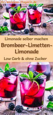 Brombeer-Limetten-Limonade selber machen – Low Carb & ohne Zucker  – Limonade selber machen – Rezepte