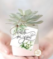 Watch Me Grow Tags For Baby Shower – Succulent Theme for Shower and Birthday Party Decorations