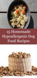 15 Homemade Hypoallergenic Dog Food Recipes Dog Food Recipes