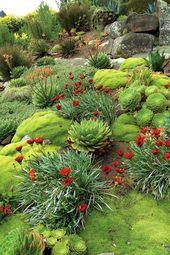 Schauen Sie sich diese fantastischen Steingarten-Entwürfe und Ideen an