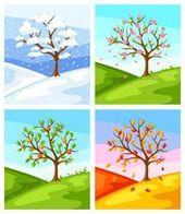 Vier Jahreszeiten Illustration Von Baum Und Landschaft Im Winter Fruhling Jahreszeiten Baumbilder Illustration