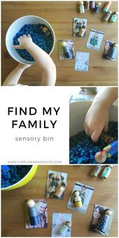 Find My Family Sensory Bin – My Family Theme- Weekly Home Preschool