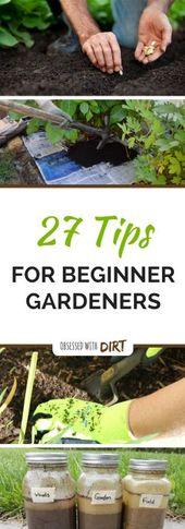 27 Tipps für Anfänger Gemüsegärtner, um mehr Nahrung anzubauen   – Gardening Tips & Tools