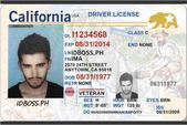 California Driver License | Scannable Fake ID | Idobss