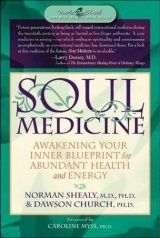 Product details books soft energy medicine pinterest books soul medicine awakening your inner blueprint for abundant health and energy malvernweather Image collections