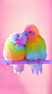 Esta dulce pareja, Arthur y Arielle, viven en la cabaña. El Grand-darli …   – Kunst