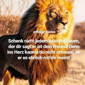 """Sprüche & Zitate🔥🦁 on Instagram: """"#q wer ist auch der Meinung? – Du wil…"""