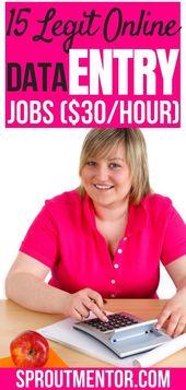 15 Legit Data Entry Jobs von zu Hause aus, völlig…