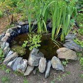 Bau eines Wildteichs im Gemüsegarten Bau eines kleinen Teichs im Garten zum …   – Anbau Ideen