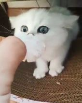 This Is Mine Don't Touch
